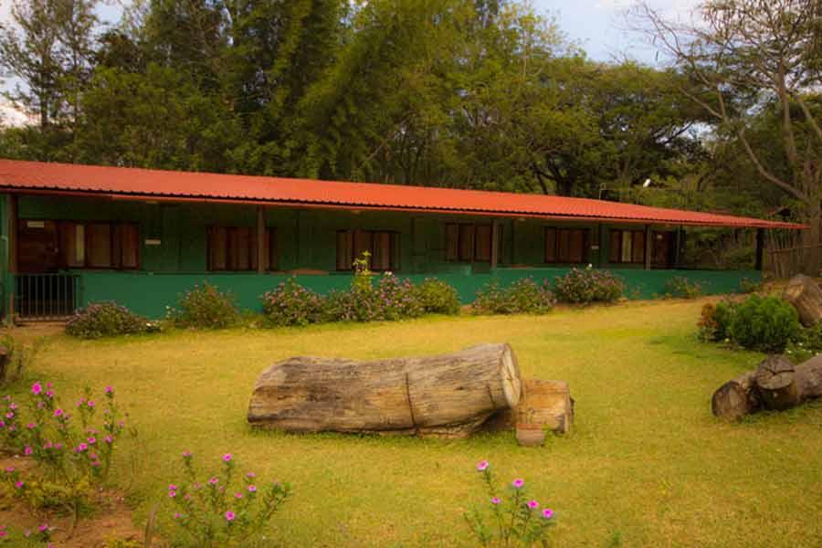 Lawn view at Bamboo Bank Farm House