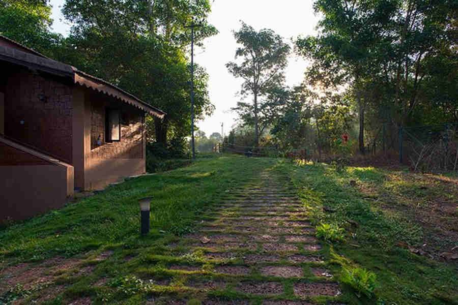 Walkway-to-the-room at Phalguni River Lodge