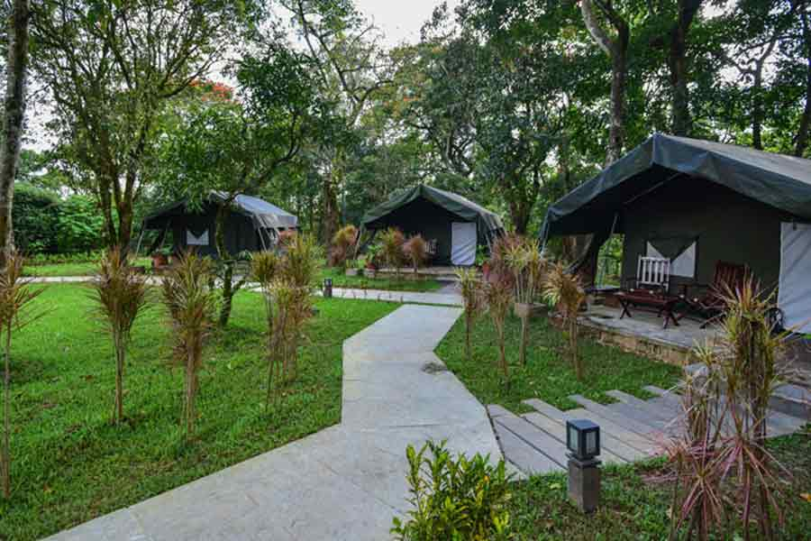 Pathway at Patio at British Style Estate Bungalow