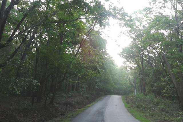 Weekend Trip to Dandeli