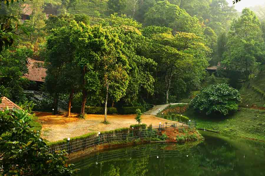 View of the Amazing Forest Resort Stay In Lakkidi