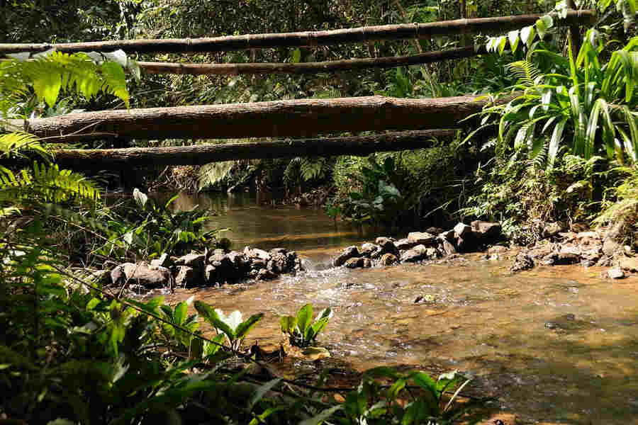 Stream at Eco friendly Cottages at Madikeri