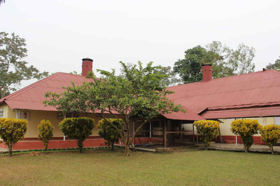 Heritage Bungalow near Dibru River