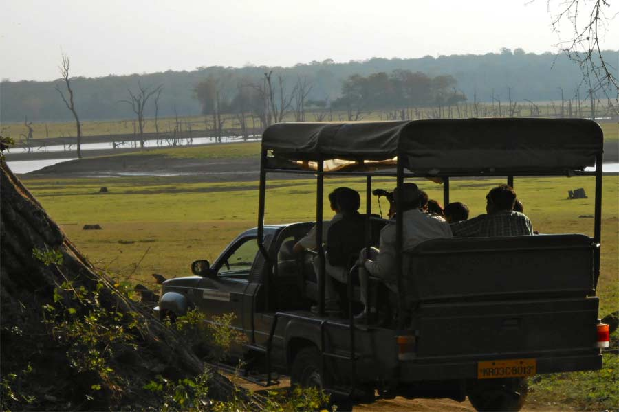 Jungle-Safari-At-Dandeli,-Karnataka