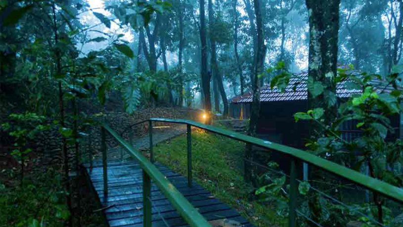 Top 7 Jungle Lodges And Resorts In South India