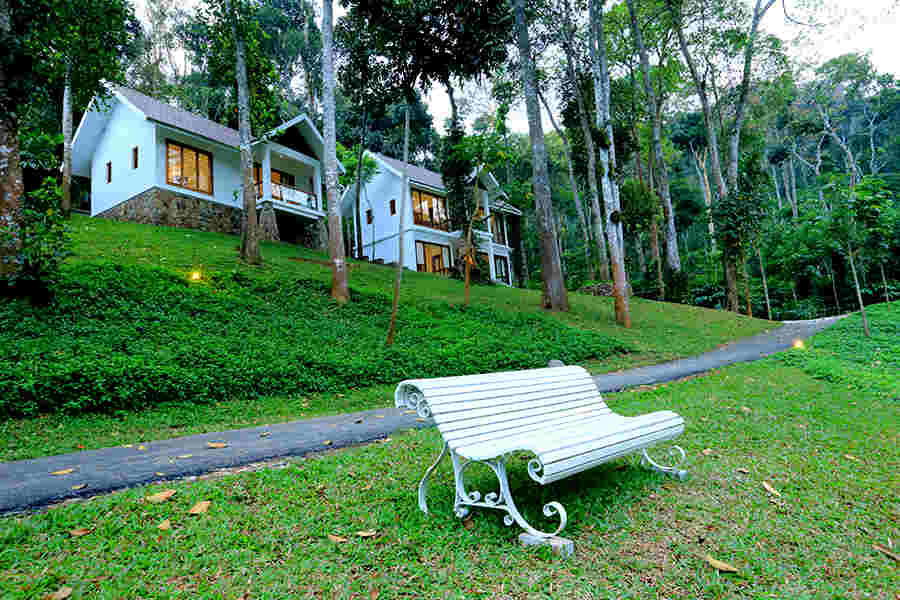 Lawn at Serene Eco-Friendly Resort In Thekkady