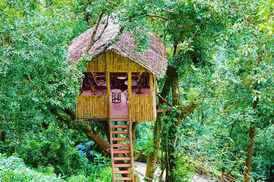 Tree Hut at Premium Luxury Resort In Pothamedu