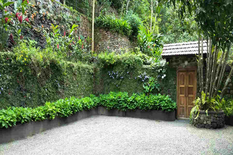 Vertical Garden in the Enchanting Heritage Homestay In Vagamon