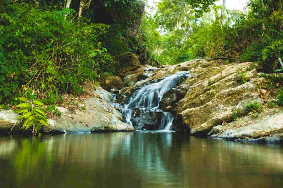 Water falls in the Plantation Resort In Letchmi Estate