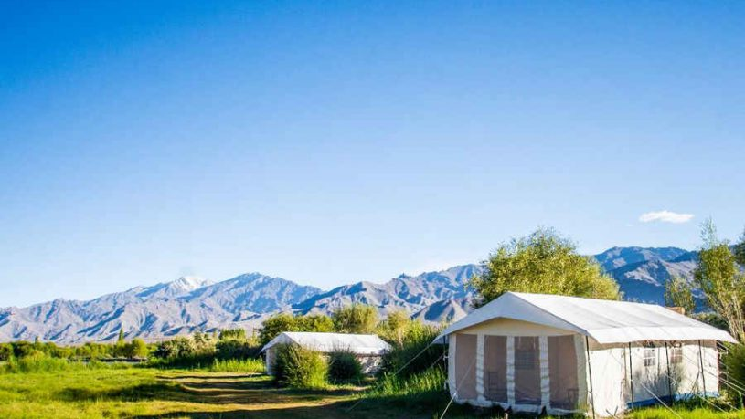 Glamping Stay At Leh