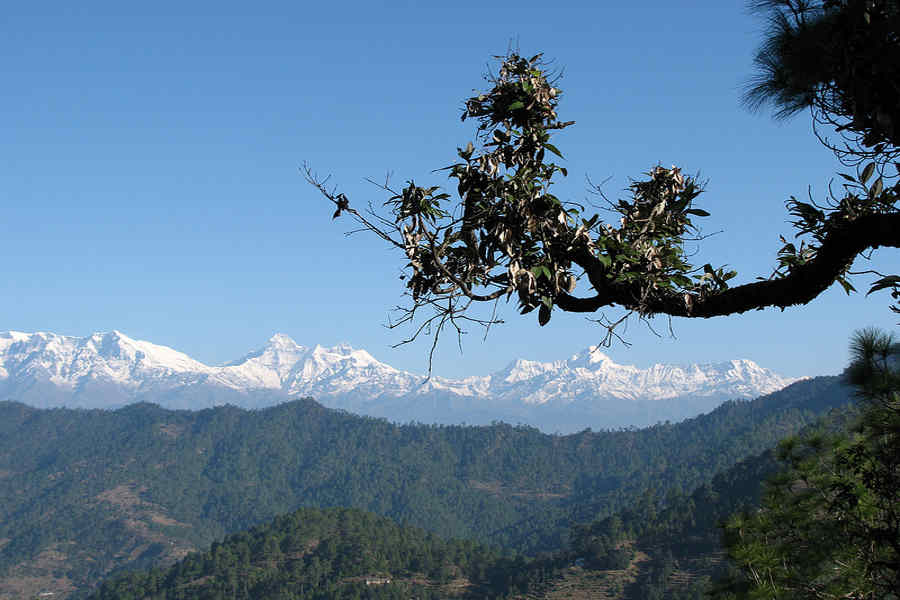 Himalayan View from Scenic Hilltop Resort Near Almora