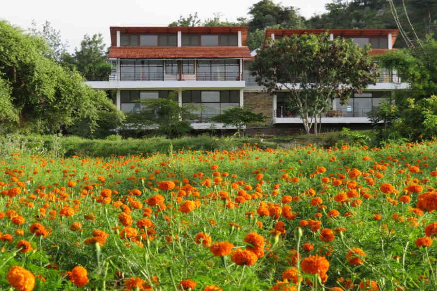 Eco-Friendly Lodge In Bandipur