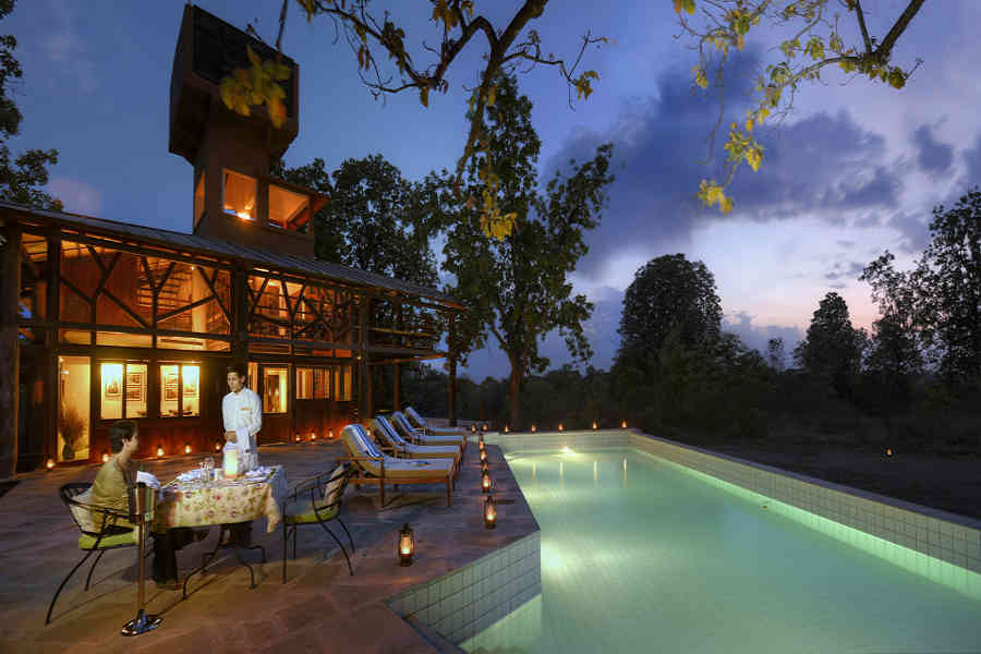 Swimming Pool at the Luxury Treehouse At Pench
