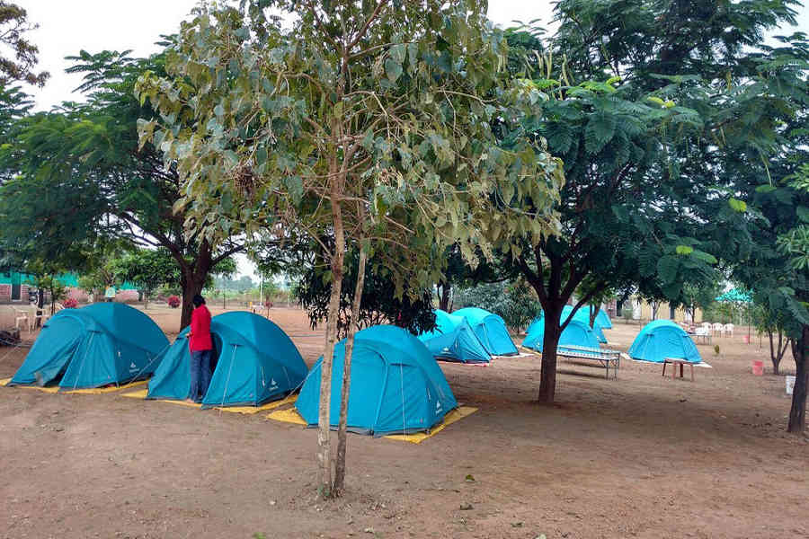 The really rustic Family Campsite Near Tikona Fort
