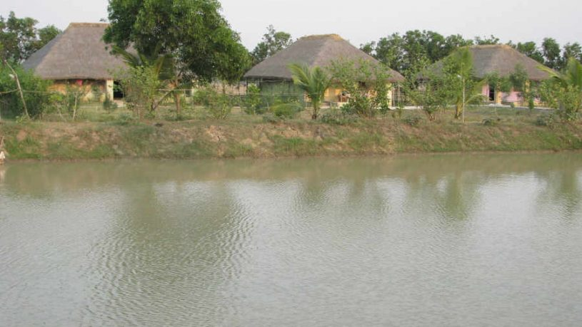 Eco-friendly Resort At Bhitarkanika
