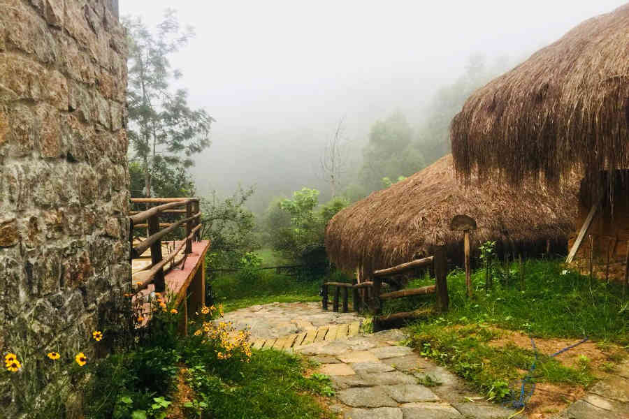 Misty mornings at the Eco-Friendly Resort At Kanthalloor
