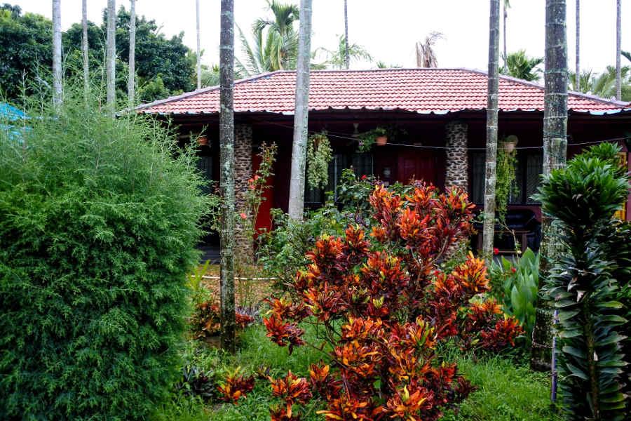 Cottage at the Offbeat Homestay In Chikkamagaluru