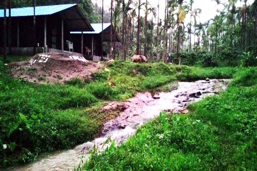 The Plantation Homestay In Mudigere