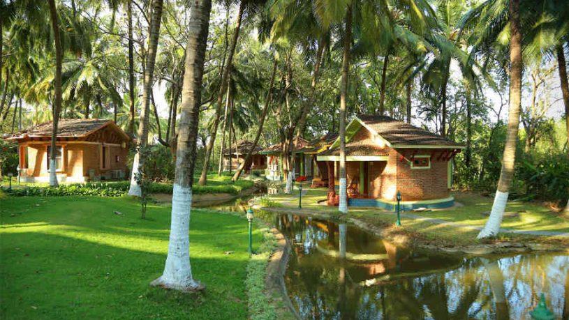The Ayurvedic Retreat in Palakkad