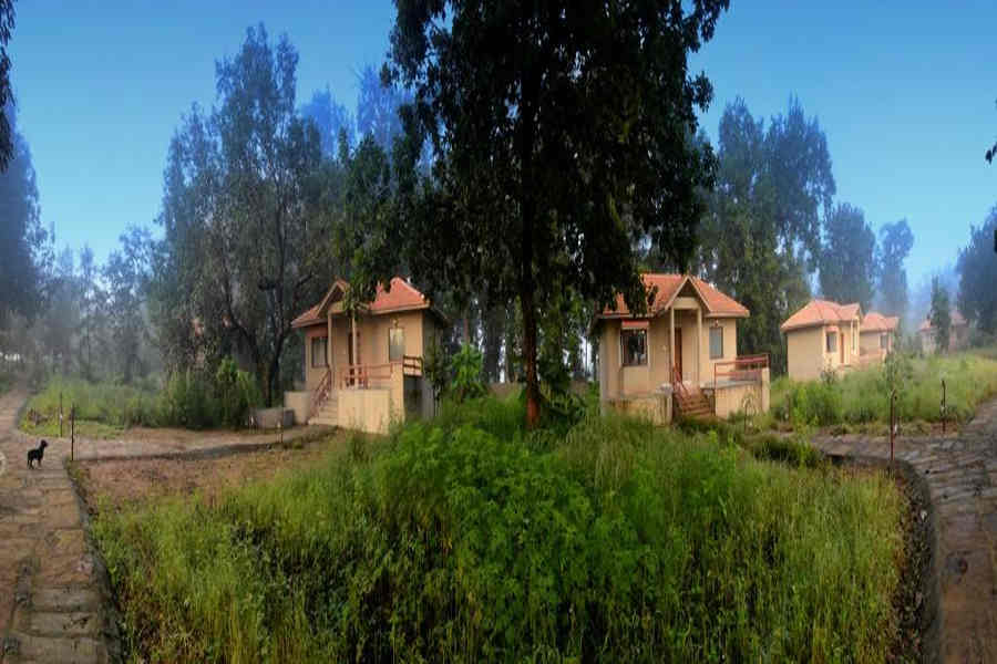 Cottages at the Jungle Retreat In Kanha