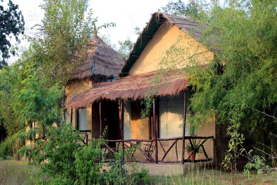 Jungle Retreat In Bandhavgarh