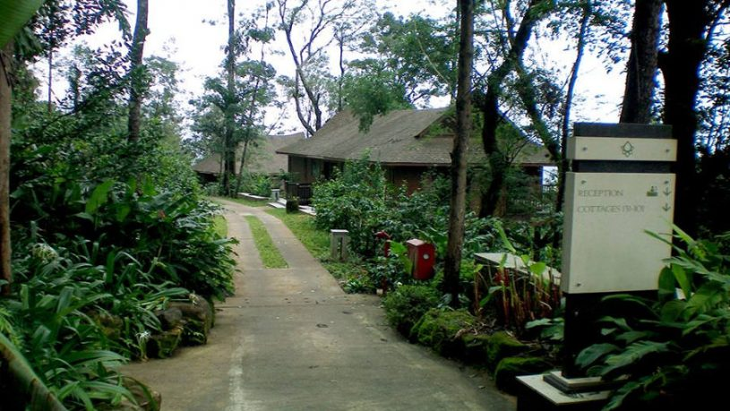 Luxury Plantation Stay In Coorg