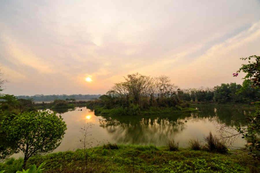 Migratory_Bird_Pond_at the Forest Retreat Near Gorumara National Park