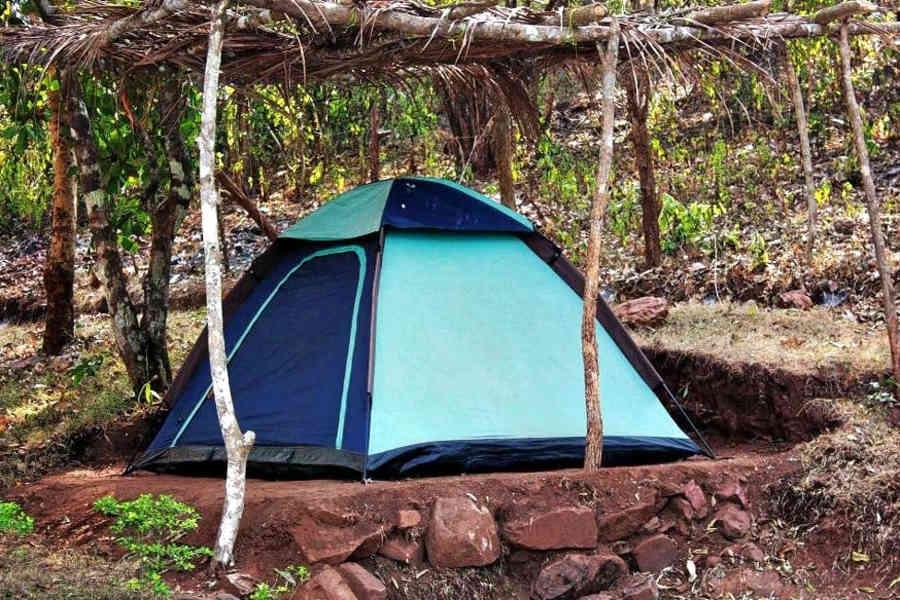 Jungle Camping