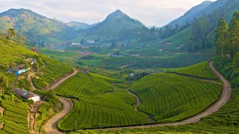 Road Trip to Meghamalai