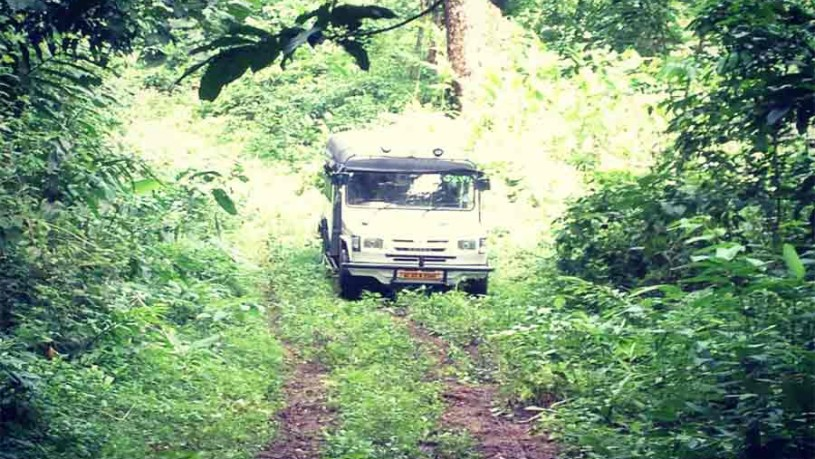 Kerala Tour - Drive through Gavi forest