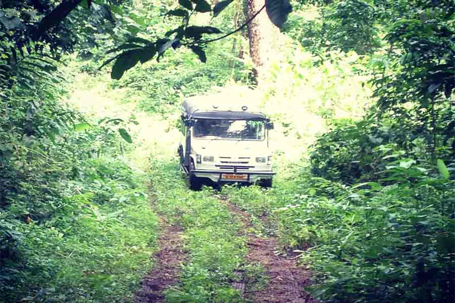 Kerala Tour - Drive through Gavi forest