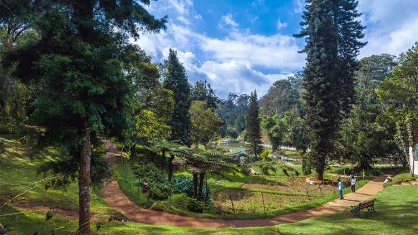 SIM's Park in Coonoor