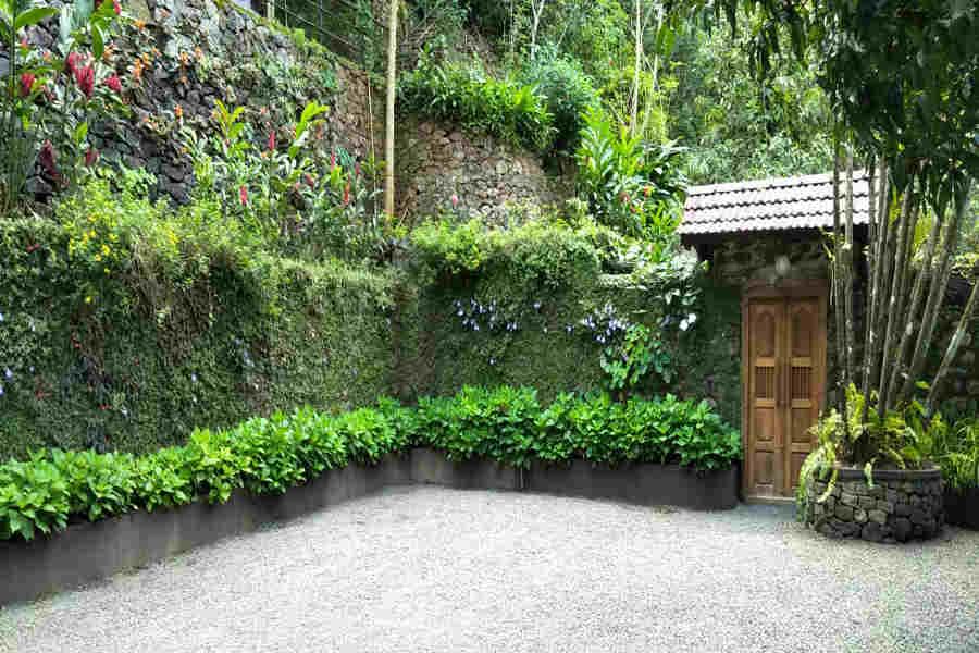 Vertical Garden in the Enchanting Heritage Homestay In Vagamon
