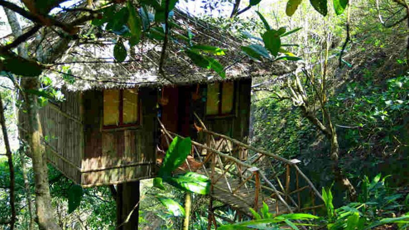 Indigenous Treehouse in Kumily