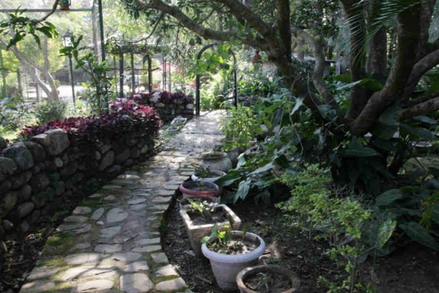 Walkway at the Upscale Resort in Dehradun