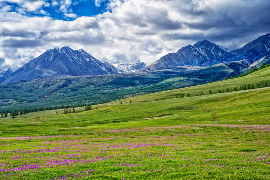 Mongolia The Russian Border Mountains