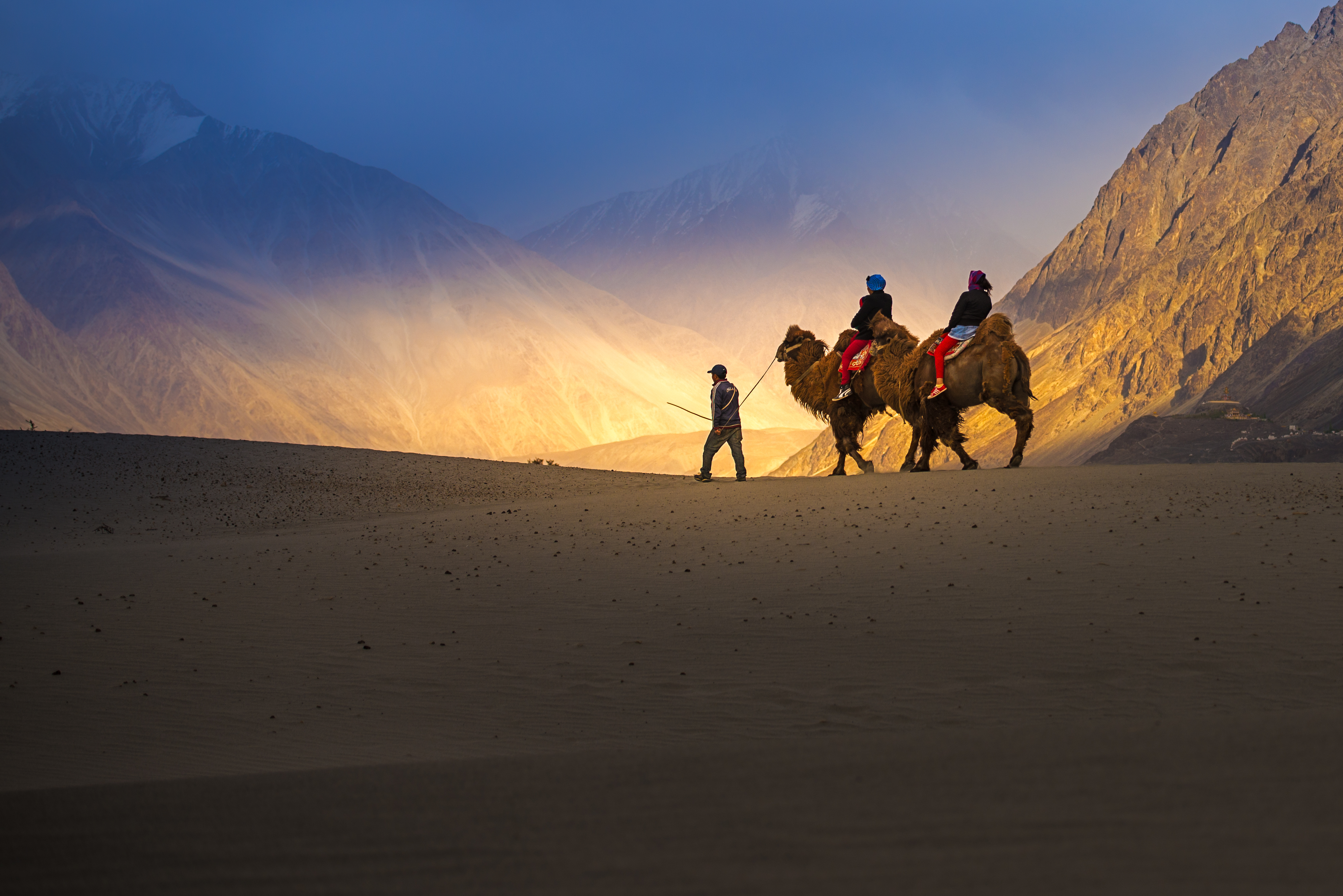 Camel-Safari-in-Nubra-Valley-India