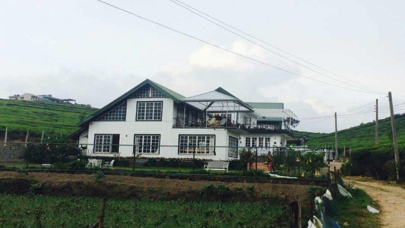 The Cozy Homestay In Nuwara Eliya