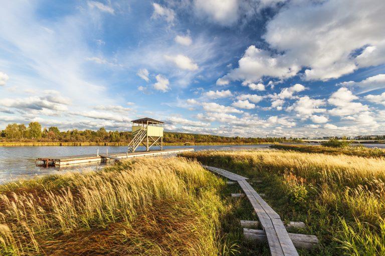 nature-trail-ladscape-rovaniemi-lapland-finland